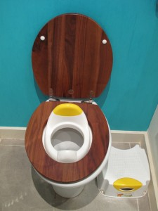 Laurence's toilet trainer seat and step